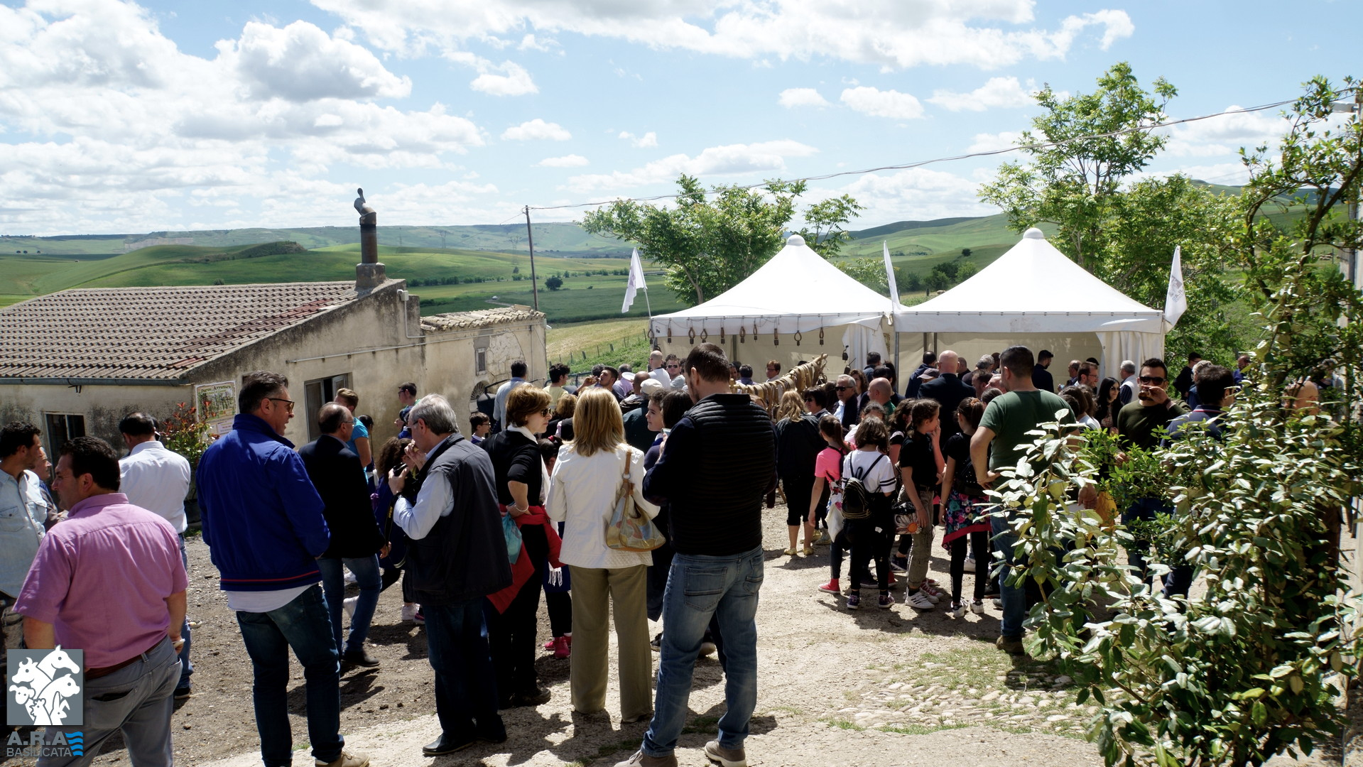 Stalle aperte, Percorso della carne in Basilicata - Azienda Potenza